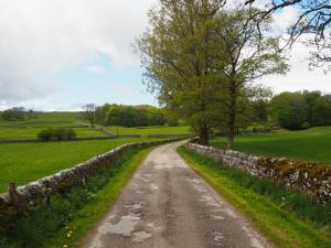 The drive leading to Wood Nook