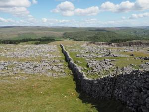 The path dropping down through some limestone pavement