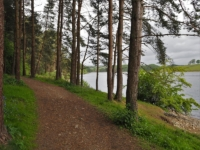 The path above the reservoir shore