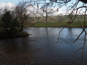 Froddle Dub where Bishopdale Beck joins the River Ure