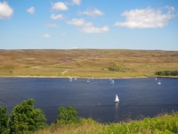 The local sailing club were out in force on Grimwith Reservoir