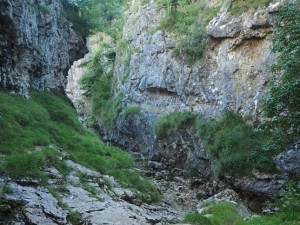 In Trollers Gill