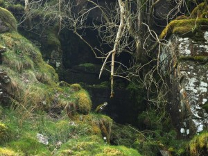What looking like a cave entrance at Rawthey Gill Quarry