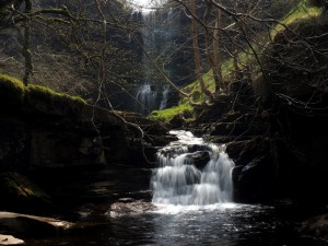 My first sighting of Uldale Force