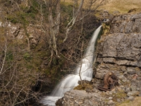 The upper section of Disher Force