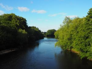 The River Ure from Tanfield Bridge