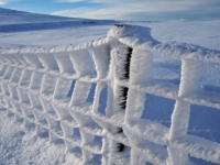 Hoarfrost on the summit fence