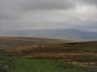 Chris on the Craven Way with Pen-y-ghent in the distance