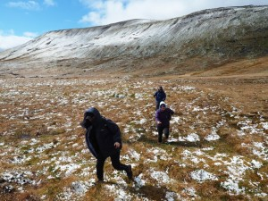 Bog trotting our way back to the main path