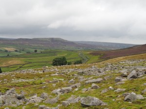 Looking down Swaledale towards Calver Hill