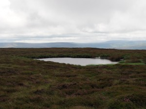 The small unnamed tarn on Spring Ridge