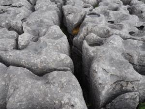 Limestone pavement on White Scars