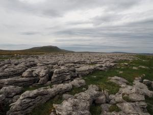 Limestone pavement on Twistleton Scars looking towards Whernside