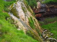 There was only a trickle coming down the tufa based waterfall