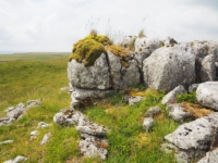 Limestone outcrop on the top of Middle House Hill