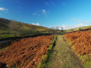 The Dales Way as it heads up Langstrothdale