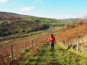 Climbing up out of Langstrothdale
