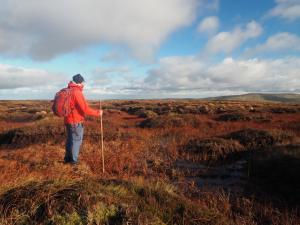 Planning my next move across the peat bogs on  Yockenthwaite Moor