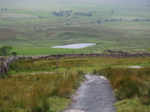 A glimpse of The Tarn