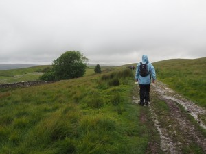 Heading up Ribblesdale on the Pennine Way