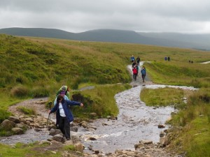 Fording Hare Gill